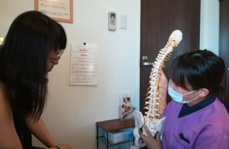 骨盤模型を使って説明